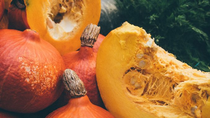 かぼちゃアイキャッチ