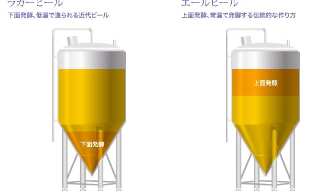 上面発酵と下面発酵のイメージ