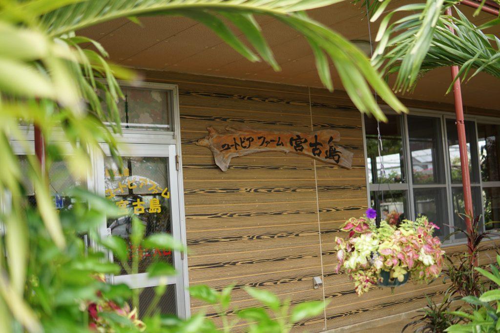ユートピアファーム 宮古島 旅行 やること 観光 おすすめ 行くべき